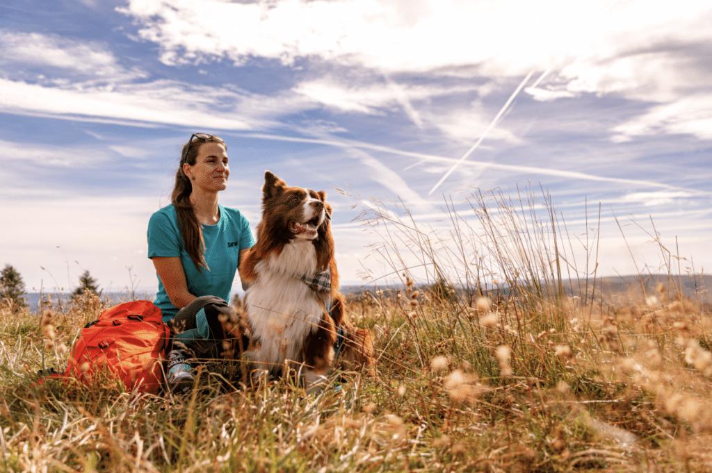 Urlaub mit Hund im Schwarzwald, Freiburg